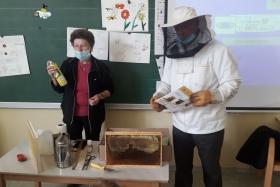 ND 1.r  - V čebelnjaku